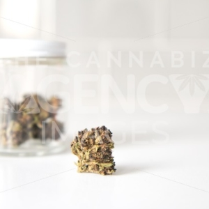 Glass Jar of Flowers on White Counter – Close Up - Cannabis Royalty Free Stock Images