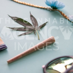 California Festival Essentials on Light Blue – Angled - Cannabis Royalty Free Stock Images