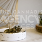 Flower Buds on Tray Flower in Glass Jar in Background on White Marble - Cannabis Royalty Free Stock Images