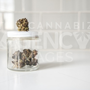 Glass Jar of Flowers on White Counter - Cannabis Royalty Free Stock Images