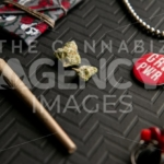 Skull and Roses Girl Power – Angled - Cannabis Royalty Free Stock Images